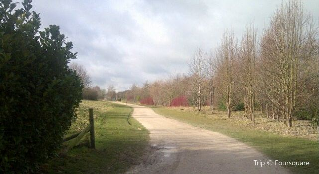 Rushcliffe Country Park1