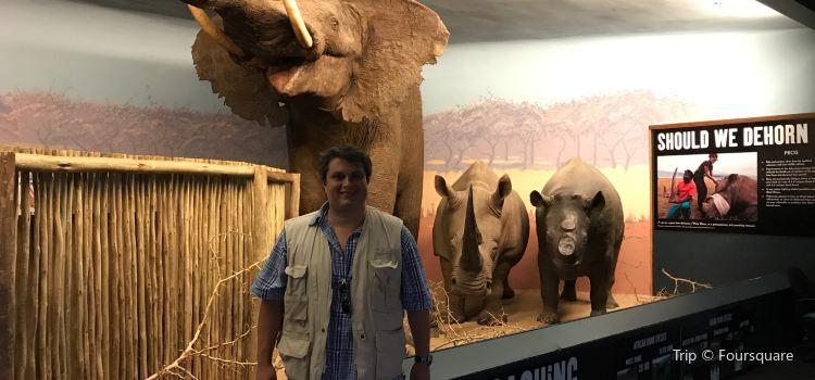 Natural Science Museum3
