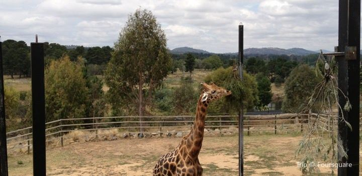 National Zoo and Aquarium2