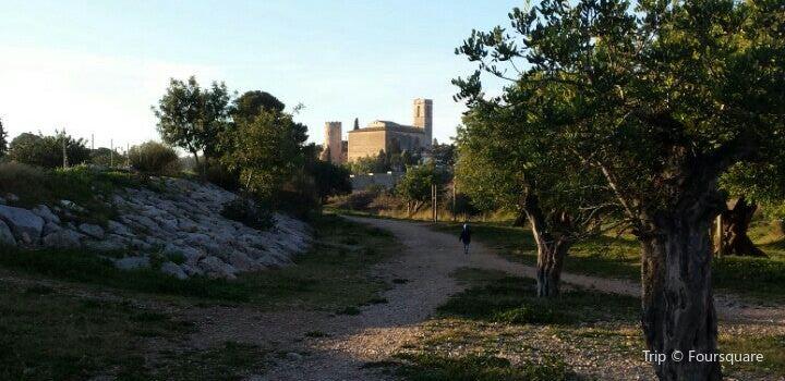 Castell de Ribes3