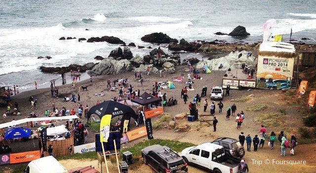 Punta De Lobos2