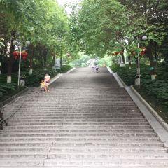 東塔公園用戶圖片