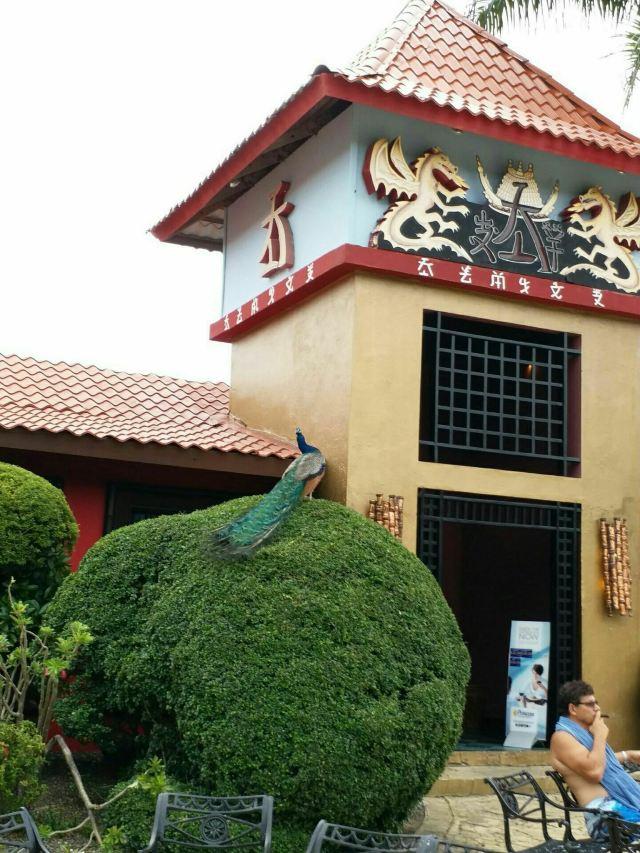 土著眼生態公園