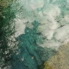 火花海用戶圖片