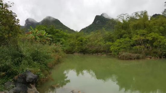 Detian Old Kapok Scenic Area