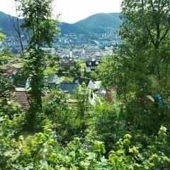 Mount Ulriken用戶圖片
