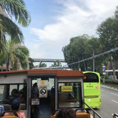 펀비 시티투어버스 여행 사진