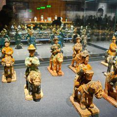 成都博物館新館用戶圖片