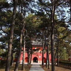 Anyuan Temple User Photo