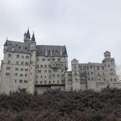 German New Swan Stone Castle User Photo