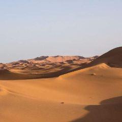 Sahara Desert用戶圖片