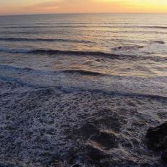 Eldwaylen Ocean Park User Photo
