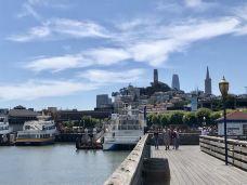 柯伊特塔-旧金山-齐步走123