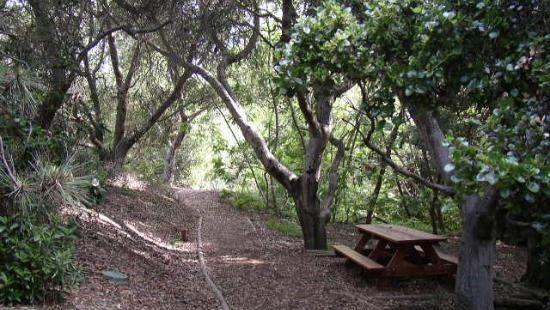 San Pasqual Battlefield State Historic Park