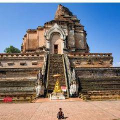 Wat Phra That Chedi Luang User Photo
