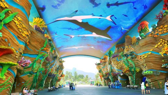 Ocean Street (in the Chimelong Ocean Kingdom)
