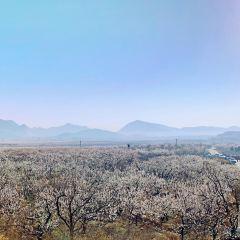 Xinglin Shanshui Park User Photo