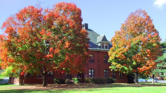 塔夫斯大學