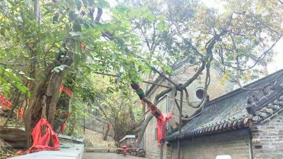 Qingshansi