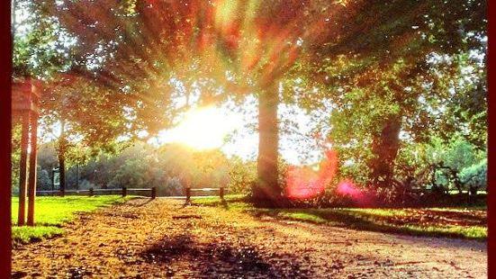 Earlham Park