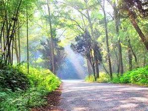 Hefu National Forest Park