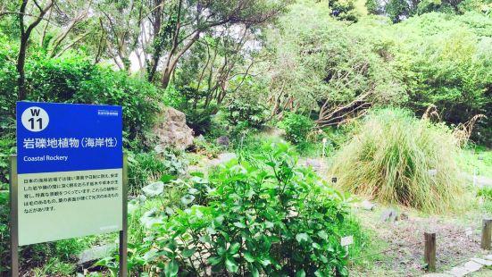 築波実験植物園