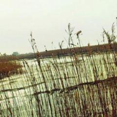 玉林濕地公園用戶圖片