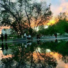 新疆農業大学のユーザー投稿写真