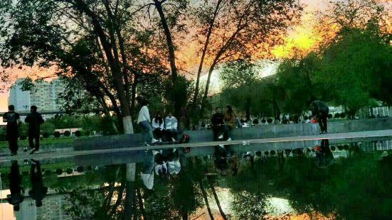 新疆農業大学