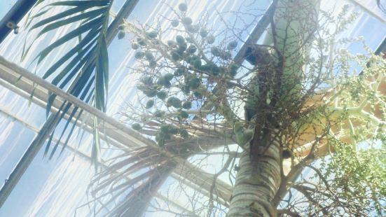 Horticulture Center - Fairmount Park