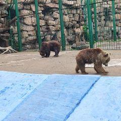 번시 동물원 - 북서문 1번 입구 여행 사진