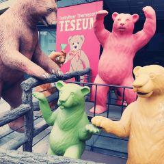 Teseum User Photo