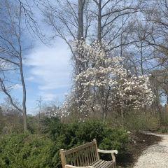 Missouri Botanical Garden User Photo