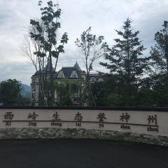 寶宇龍花溫泉用戶圖片