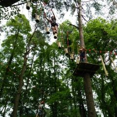 Daqishan Crazy Forest Theme Park User Photo