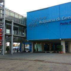Aquarium of Genoa User Photo