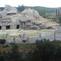 雁鳴湖神龍溫泉度假村用戶圖片