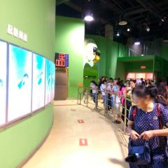 Chongqing Science and Technology Museum User Photo