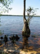 Buckeye Lake State Park用戶圖片