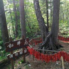 Songhualian User Photo