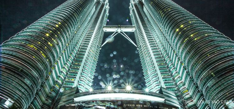 Petronas Twin Towers2
