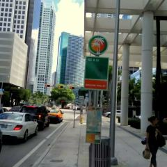 Downtown Miami User Photo