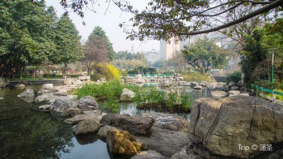 神仙樹公園