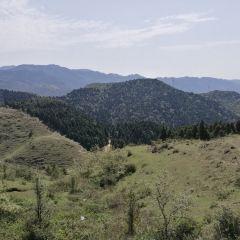 大容山森林公園用戶圖片