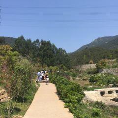 Zimao Mountain Scenic Area User Photo