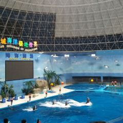 Quancheng Ocean and Polar World User Photo