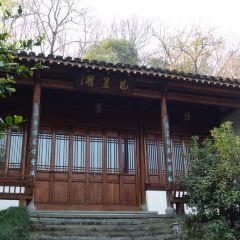 Eight Sights of Longjing User Photo