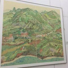 浦江美術館用戶圖片