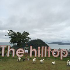 The Hilltop User Photo