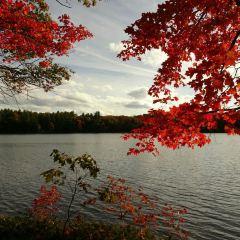 Hardy Lake Provincial Park User Photo